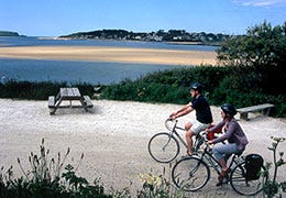 Couple cycling along waterside