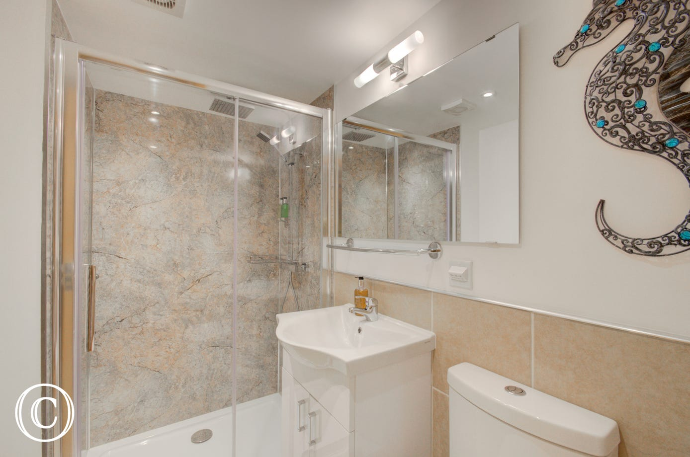 Shower room with double-head shower